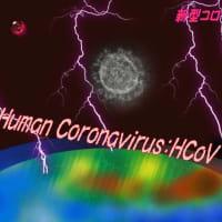 新型コロナ長引きそうな・・・パンデミック化しそうなウイルス・・相次ぐ中止と休校&世界の情報共有