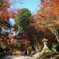 滋賀&京都