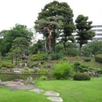 肥後細川庭園の森博志さん。