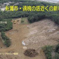 明日から2日間、沖縄県議会で南部地区からの土砂採取についての参考人招致。特に、9日(金)午前10時からの具志堅さんの参考人招致の傍聴を! <追記>古宇利島周辺でジュゴンの食み跡を確認