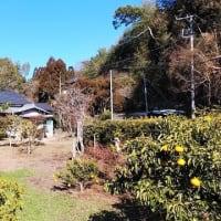 価値ある不動産を再生する+α×10!!『 岬町椎木 MさんのEnjoy farm house 』⌂Made in 外房の家。は本日無事にお引渡完了!!しました。