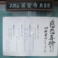 近場のお寺探訪;等覚寺と大慶寺の掲示板