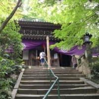 京都・東山を散策