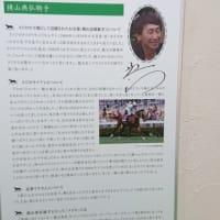 函館競馬場で遊んできたンだよ!