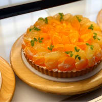 柑橘系タルト🍊