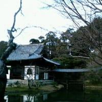 京都で初詣