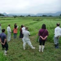 令和元年度第1回大崎地域農業改良普及活動検討会を開催しました