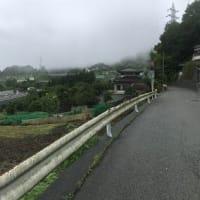 旅ラン「甲州道走膝痛シ」…相模湖~鳥沢、その1(小雨ラン)