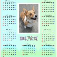 ペットカレンダー