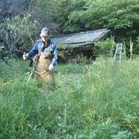 夏の間放置していた桃園周辺を草刈り