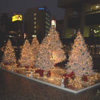 街はもうクリスマス気分・・・