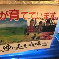 代々木公園「OKINAWAまつり」へ〜嵐のライブによる帰宅難民中〜