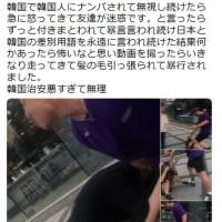 また日本人女性が韓国に行って朝鮮人に暴行された!  これが知っておくべき朝鮮人の真実