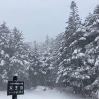 双子池ヒュッテ 2021.1.1 双子池~北横岳までの登山道の状況