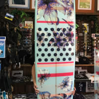 ROXY SURF BOARDS