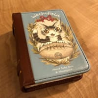 これはカードケースなんです。 @nara_mise