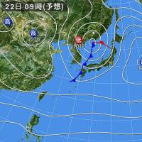 関東は春一番かしら? (o・ω・o)?そして寒の戻り?