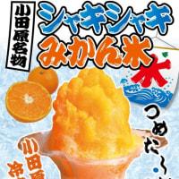 旨いもの屋台で人気の「シャキシャキみかん氷」小田原早川漁村 漁師の浜焼 あぶりや