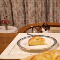 洋梨ケーキとジャムにゃの。