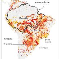 アマゾン火災問題の原因は自由貿易