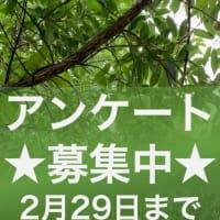 2/29まで【アンケート!】自然環境・森林保全の活動にかかわるみなさまへ