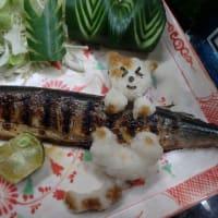 9、猫がサンマを狙う瞬間。再び捉えた衝撃的な写真。