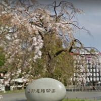 春先の、あちこち美術館巡り ~皇居&東京都・三菱1号館美術館巡り~ (二)