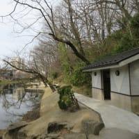Friday morning report from Inner Moat in Senshu Park