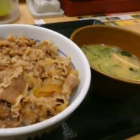 なか卯の牛丼