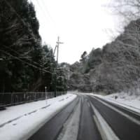 味宿きぬや 久しぶりの積雪です