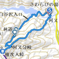 棒の折山 (白谷沢~河又コース)