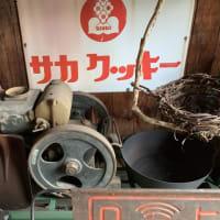 雨竜町の豆電球