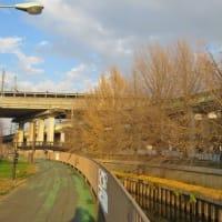 鴻沼川トレーニング202012