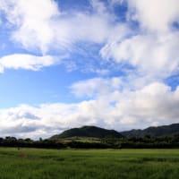 週末荒れる前の、良い天気でした。
