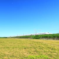 東海道本線は磐田市付近の田んぼと新幹線(2021年8月)