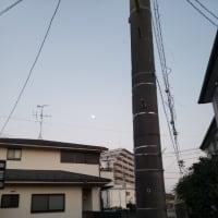 もう月が出ている