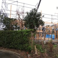 いすみ市日在『 Kさんファミリーの土間の家 』⌂Made in 外房の家。は本日、無事上棟完了!!しました。