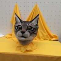 東京美術館 猫のかぶり物を体験