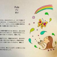 本「アロハ・スピリット*笑顔の幸則」のイラストレーター