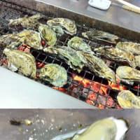 今年は牡蠣が豊漁です。