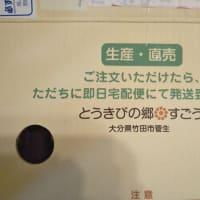 【メッセージ】古賀仙太郎を送る