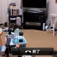 Skypeで留守番カメラ