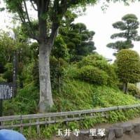 21世紀の朝鮮通信使友情ウォーク48日目「吉原~三嶋大社」