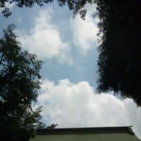 梅雨より台風のたまごが心配…( ̄へ ̄| | |) ウーム  今日の雲とアイスはやっぱり赤城乳業でしょ!