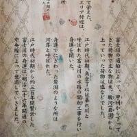 【富士川楽座】体験館どんぶら 夏休み水族館 FILE:3