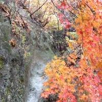 紅葉と温泉