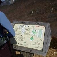 10年後の那須岳周遊
