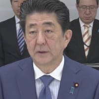 "【nhk news web】  (重要記事) ;  1月22日17:38分、""""新型コロナウイルスへの対応 日本国内では"""""