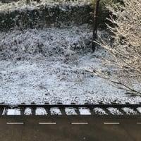 雪が積もったん