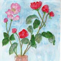 習作:バラの花(スケッチ&コメント)